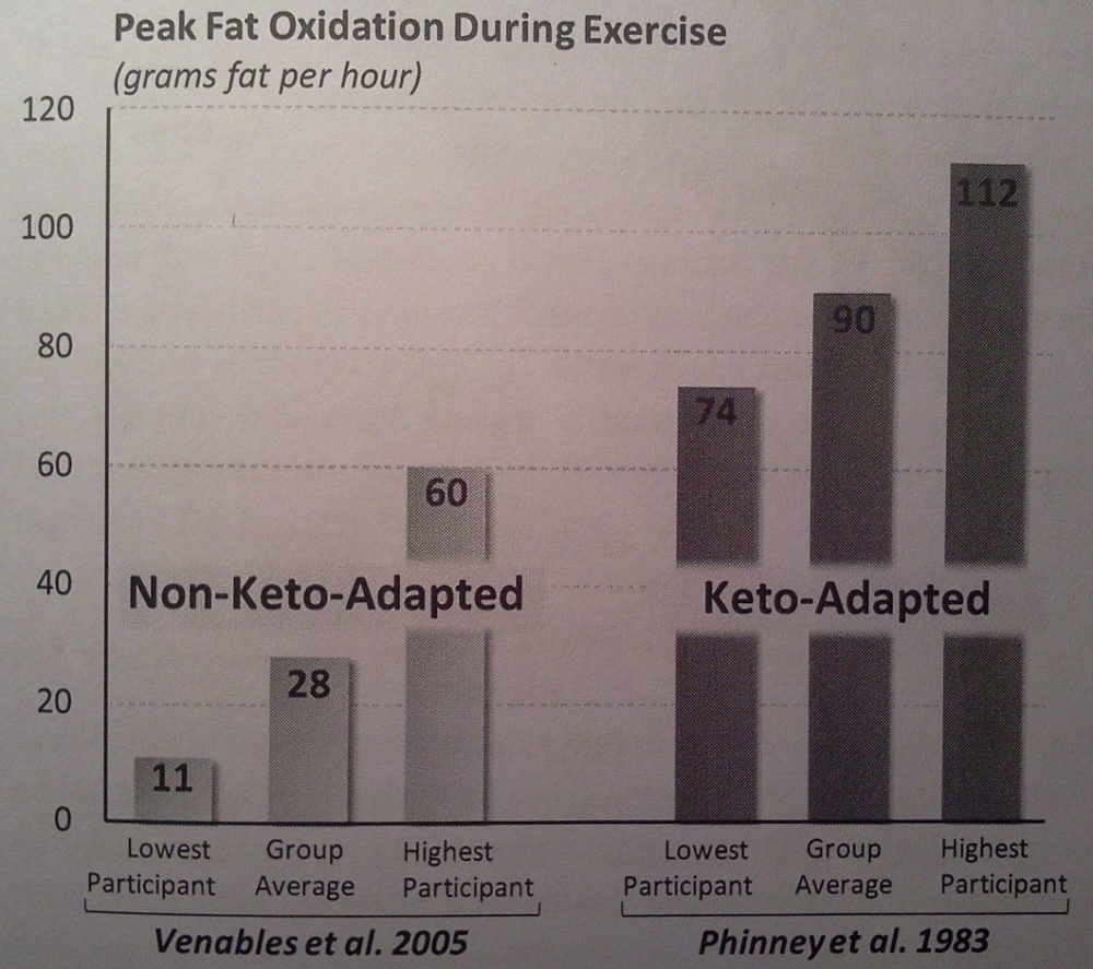 Phinneys_Keto-Adaption_Experiments_in_Endurance_Athletes_AesirSports