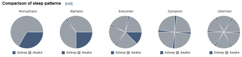 """Hack dein Gehirn: Polyphasischer Schlaf besteht aus mehreren """"Kernschlafphasen"""" pro Tag, anstatt dass man sich jeden Abend für ~8 Stunden ins Bett legt. Das Aufteilen des Schlafes erlaubt es dem Anwender mehr Zeit im Wachzustand zu verbringen - und somit die Möglichkeit bietet, """"mehr am Tag zu schaffen."""" Die krasseste Version des PS, die """"Ubermann-Methode,"""" kommt mit 4 Stunden Schlaf pro Tag aus (aufgeteilt in 20 Minuten Kernschlafphasen, die euch sofort in die REM-Phase, die regenerativste und essenziellste Schlafphase, katapultieren. (Bildquelle: Wikipedia.de)"""