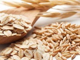 Studie (Nutrition): Bigger ist better - Haferflocken im Test: Blütenzart oder doch lieber kernig?