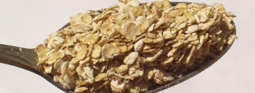 Studie (Nutrition): Bigger ist better – Haferflocken im Test: Blütenzart oder doch lieber kernig?