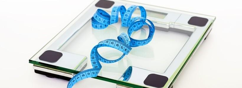 Die Waage lügt: Über Kalorien, EPs und neuste Studien