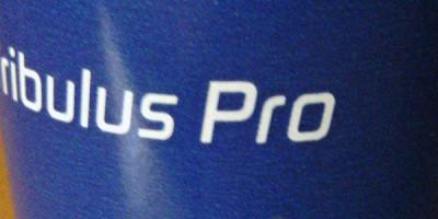 Supplement-Review Burzeldorn: Tribulus Pro – out now