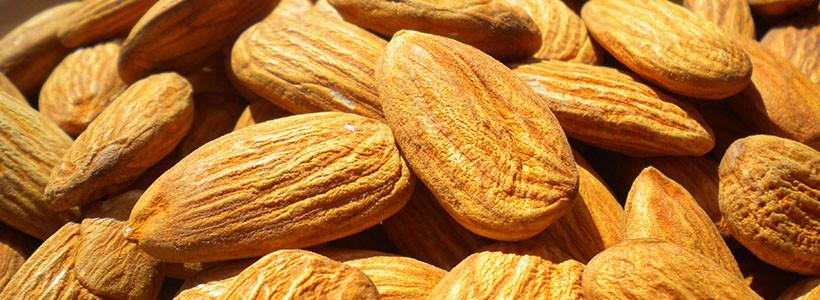 Studie zeigt: Mandeln haben weniger Kalorien als angenommen