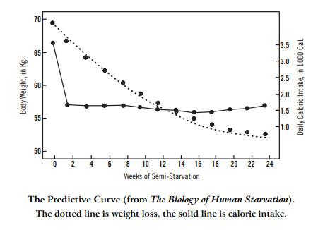 Energiestories - Part III.1: Kalorienrestriktion & Diät: Das Minnesota Starvation Experiment
