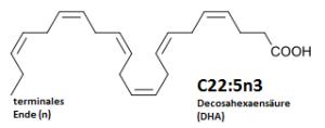 High-Tech Nährstoffe; Eine Lektion in Sachen Carb Backloading