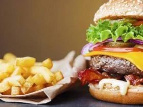 Fett & Kohlenhydrate in einer Mahlzeit. Wie reagiert das Insulin?