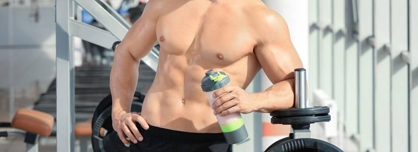 Essenzielle Aminosäuren (EAAs), Katabolismus & Körperkomposition