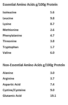AS_Score_Milchprotein_MP_AesirSports
