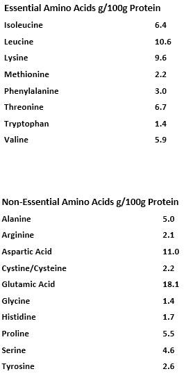 AS_Score_Wheyprotein_MP_AesirSports