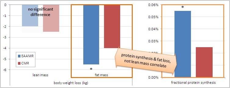 Schaubild 2: Die Grafik zeigt die Veränderungen der Mager- & Fettmasse in Kilogramm (links), sowie die fraktionale Proteinsyntheserate (FSR; in der Skelettmuskulatur;mitte) bei Probanden, die eine isokalorsischen Mahlzeitenersatz erhielten (weder Kcal-Plus noch Kcal-Minus). Die Komposition der Mahlzeiten wie aus Grafik 1 oben, jedoch mit einem anderen EAA-Gehalt (5x6g = 30g EAAs). Die Messung der Körperkomposition erfolgte via der BIA-Methode. (Quelle: Suppversity)