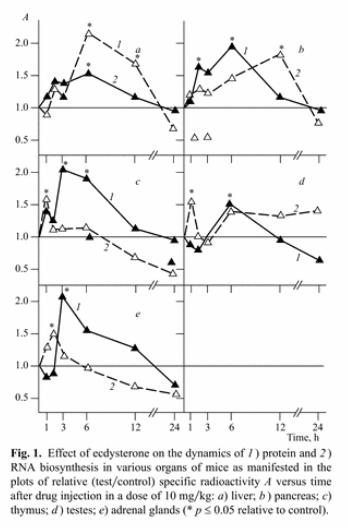Pflanzliche Testosteron Booster: Von Maca, über Tribulus hin zu Ecdysteron