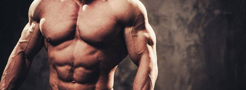 "BB-Mythbuster: Muskelmasse, ""hoher Energieverbrauch"" & Proteinbedarf"