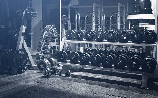 Der HFT-Guide: Muskelaufbau & Fettabbau in Rekordzeit