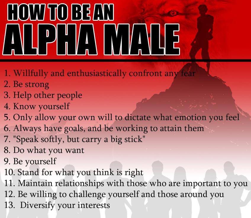 Der PickUp-Alpha ist mehr als oft mir eine Silhouette - ein Schatten dessen, was ihr wirklich sein könnt, wenn ihr euch anstrengt.