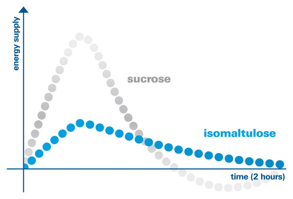 Mit geringerer Blutzuckerkonzentration wird auch eine geringere Menge des Speicherhormons Insulin in die Blutbahn abgegeben. Hohe Mengen an Insulin verhindern eine effiziente Fettverbrennung. (Bildquelle: Beno Palatinit)