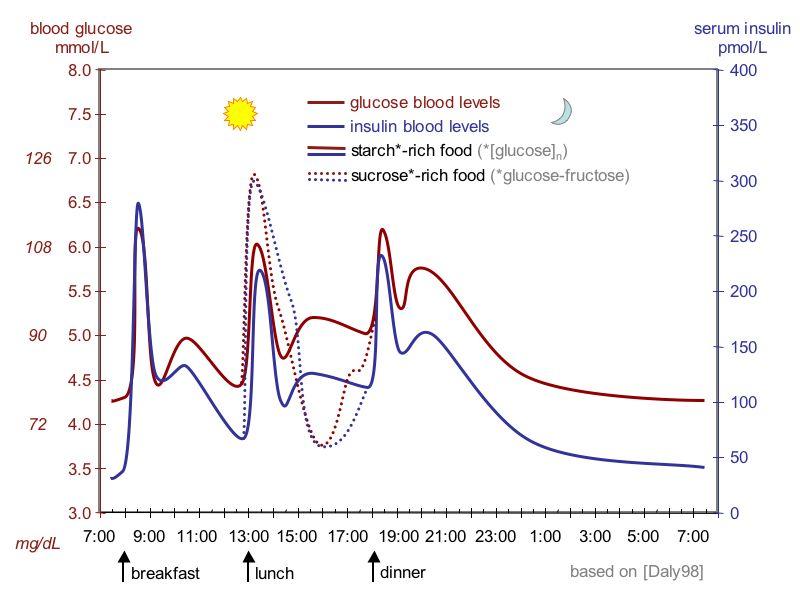 Wann immer wir Kohlenhydrate konsumieren, erhöht sich die Blutzuckerkonzentration