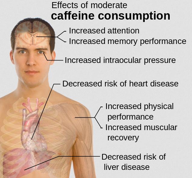 Koffein_Gesundheit