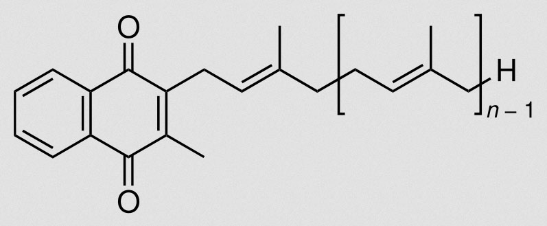 Menachinon - auch als Vitamin K2 bekannt - schützt die Arterien vor Kalziumablagerungen und trägt somit zur langanhaltenden Herzgesundheit bei (Bildquelle: Wikipeda.de)