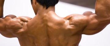 """Die """"Pumperschulter"""" – Schulterprobleme beim Krafttraining"""