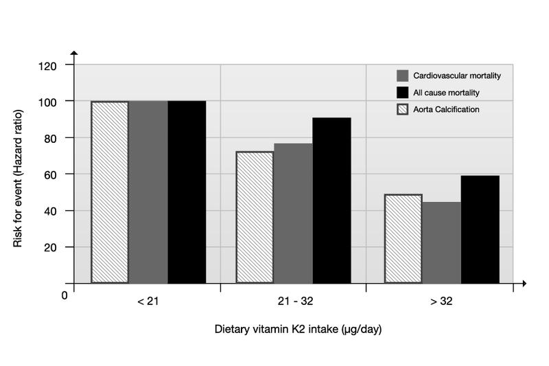 Die Rotterdam-Studie stellt eine mengenmßige Abhängigkeit zwischen der Vitamin K2-Aufnahme und dem Risiko für Herz-Kreislauf-Erkrankungen dar. (Bildquelle: Wikipedia)