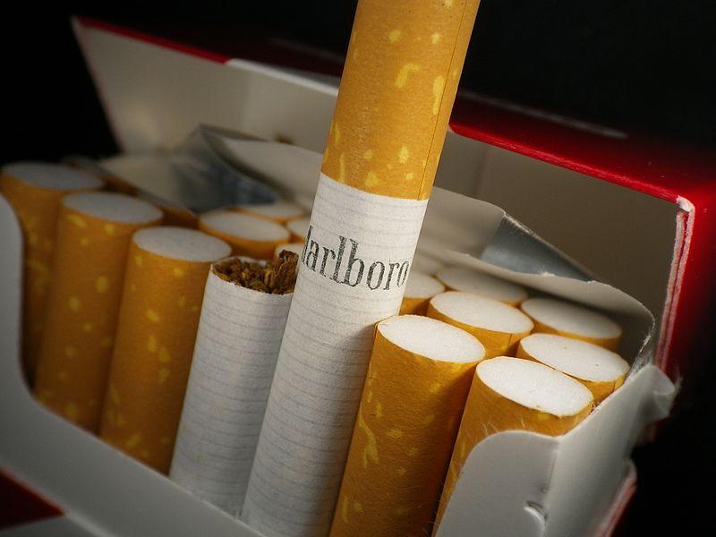 Studie sagt: Hohe Proteinmengen genauso schädlich wie Rauchen