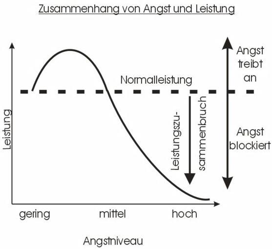 Arousal – Die Bedeutung des Erregungsniveaus für optimale Leistung und wie man es beeinflussen kann