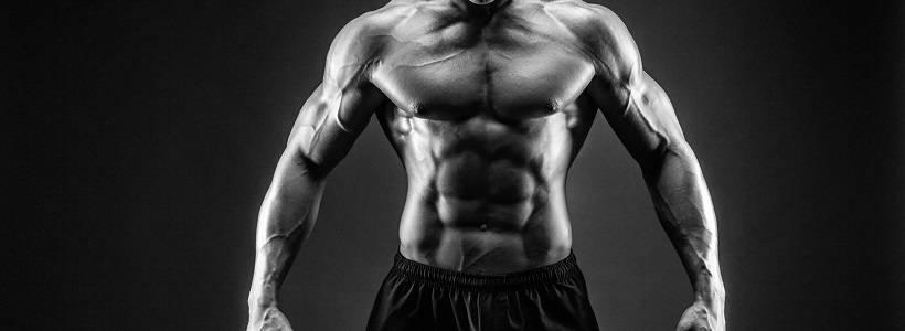 Die Anabole Diät: Ein umfassender Ernährungsguide