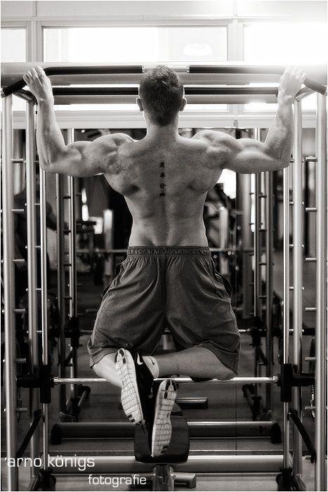 Fabian Mertens Fitness Model