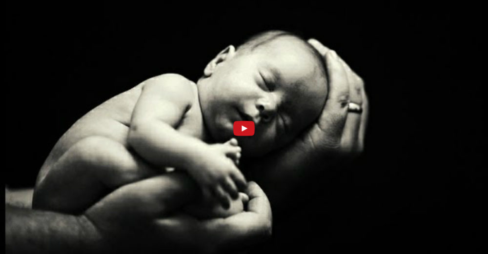 Born to Succeed - Motivationsvideo