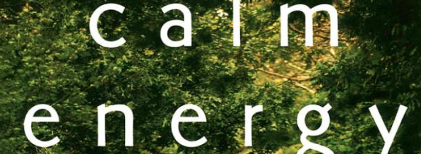 Buchempfehlung: Calm Energy von Robert E. Thayer
