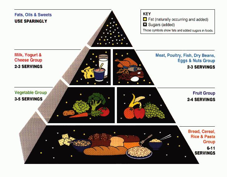 """Lange Zeit in Stein gemeißelt: Die von kohlenhydraten dominierte """"Ernährungspyramide."""" (Bildquelle: Wikimedia.org / USDA ; CC Lizenz)"""
