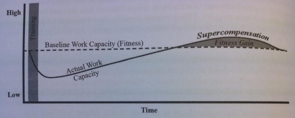 (Bildquelle: Kilgore/Hartman/Lascek, S.14.)