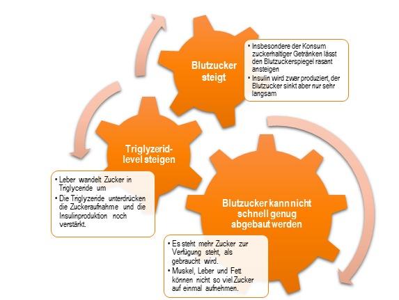 Abb. 5: Beim Konsum großer Mengen an schnell in die Blutbahn gelangendem Zucker entsteht ein Teufelskreis, der sich im Endeffekt nur wenig von demjenigen unterscheidet, der zuvor für den gleichzeitigen Konsum großer Men-gen von Fett und Kohlenhydraten beschrieben wurde.