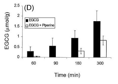 Selbige Untersuchung zeigt auch, dass die Clearance von EGCG bei Piperingegenwart weitaus geringer ausfällt, als ohne. Das EGCG ist länger aktiv.