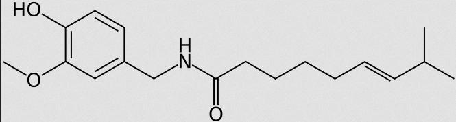 Chemische Strukturformel von Capsaicin (Bildquelle: Wikimedia.org / Arrowsmaster ; CC Lizenz)