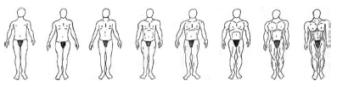 Frauen-finden-Bodybuilder-unattraktiv-Frederick-Haselton-1