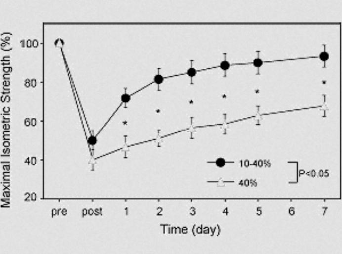 Grafik 1: Entwicklung der maximalen isometrischen Kraft vor, nach und wenige Tage nach der Intervention. (Bildquelle: Lavender/Nosaka (2008))