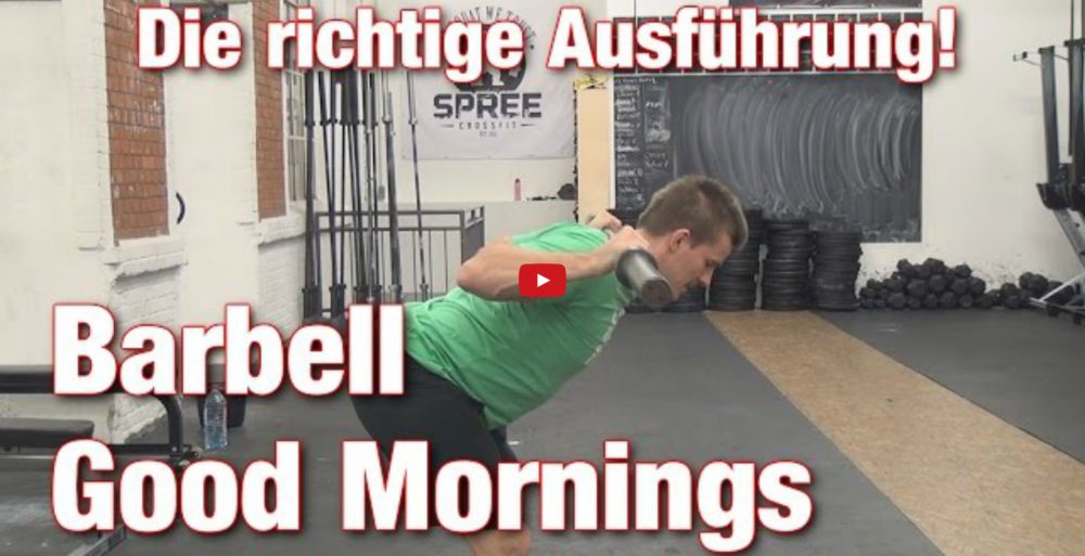 [Video] Johannes Kwella - Barbell Good Mornings: Die richtige Ausführung