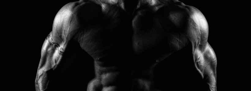 Das Orchester des Muskelaufbaus - Wie unterschiedliche Hormone ein anaboles Umfeld erschaffen – Teil 2: Insulin