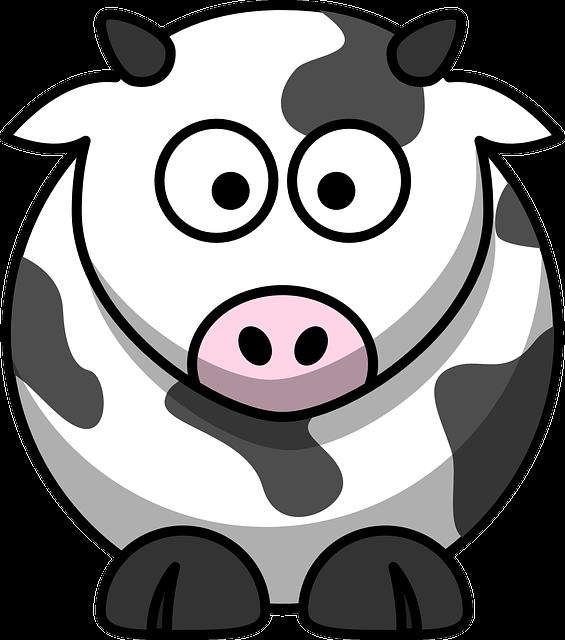 Milch als Post-Workout-Nutrition: Wie effektiv ist es wirklich?