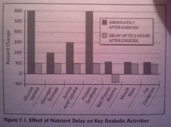 """Ob nun Protein oder eine Post-Workout-Formel: Für die meisten von uns gilt das """"Anabole Fenster"""""""