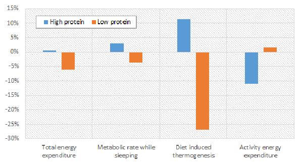 Mein Kollege Adel hat in einem seiner Artikel die Auswirkungen von High- und LowProtein anhand einer Untersuchung von Martens et al. (2014) diskutiert.