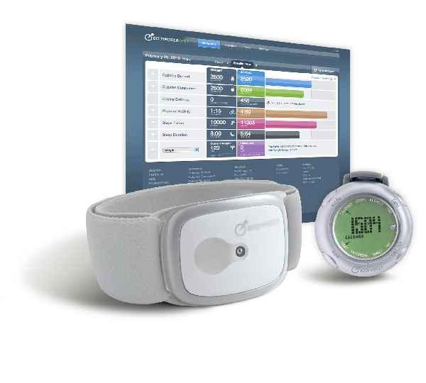 Kalorien-Tracking leicht gemacht: Mit dem Bodymedia-Armband kannst du deinen täglichen Kalorienverbrauch bequem (und professionell) analysieren lasssen