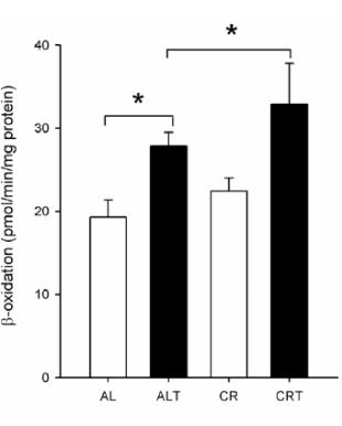 Grafik 3: (Bildquelle: Ergo-Log.com / Rodríguez-Bies et al. (2010))