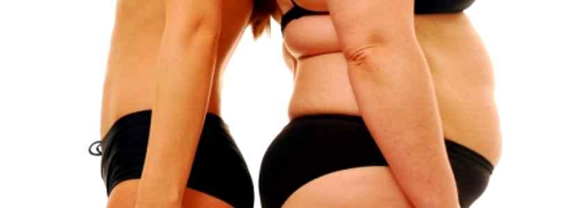 Fettblocker Chitosan - Wirksames Diätmittel oder Werbelüge?