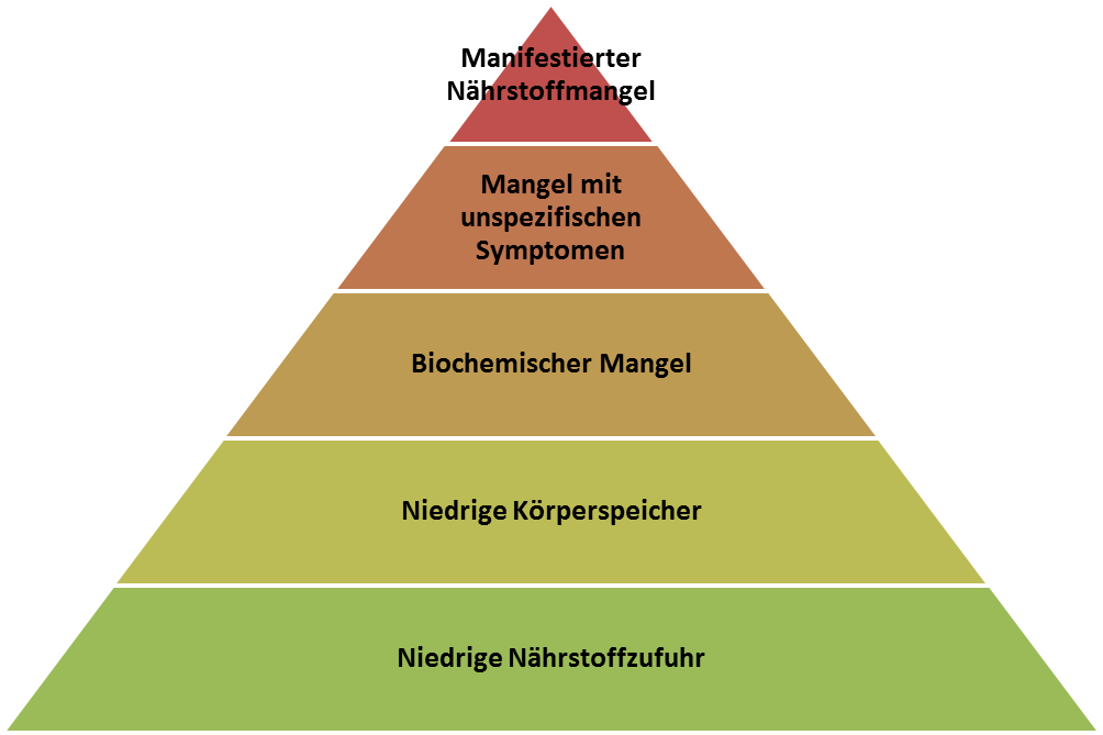 "Die ""Nährstoffmängel-Pyramide"""