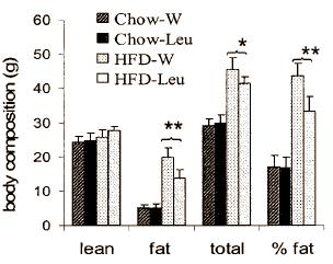 (Bildquelle: Ergo-Log.com (2011) / Zhang et al. (2007)