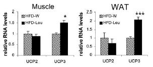(Bildquelle: Ergo-Log.com (2011) / Zhang et al. (2007))