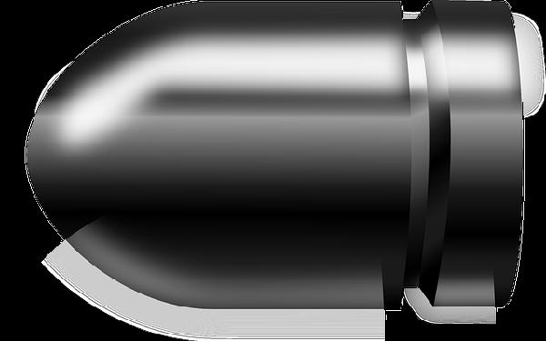 (Bildquelle: Pixabay.com / Nemo ; CC Lizenz)
