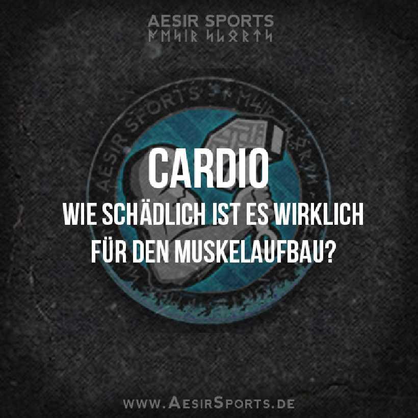 Cardio: Wie schädlich ist es wirklich für den Muskelaufbau?